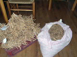 Die Bohnen sind trocken und fertig zum Ausliefern - stilecht am Band und im Kopfkissenbezug