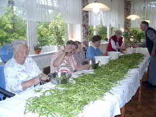 Die AWO Norden beim geselligen Bohnen-Ströpen